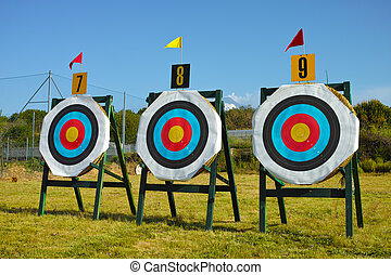 archery targets - Official 120 centimeters archery targets