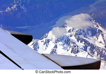 Mount Cook - New Zealand - MT COOK, NZ - JAN 18: Wing of a...