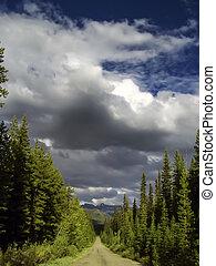 Banff national park landscape
