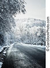 bosque, camino, invierno