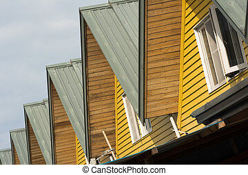 Roofs of houses