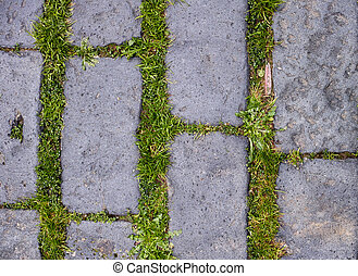 stone floor with green grass