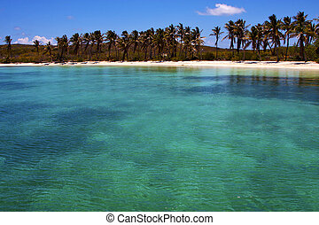 and rock in the blue lagoon relax of isla contoy mexico -...