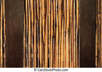Detail of a bamboo fence