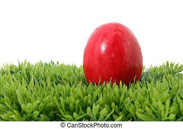 red easter egg on grass - a red easter egg on grass