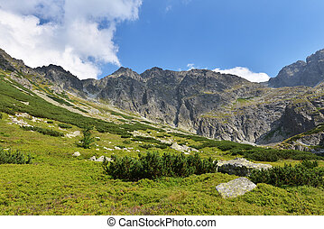 Tatry mountains - Summer landscape of polish Tatry mountains