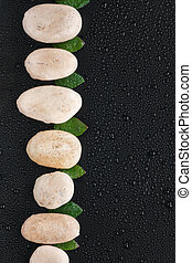White stones and leaf  lie on a wet black background
