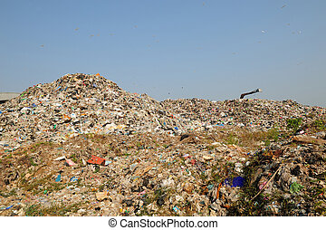 garbage heap problem of pollution