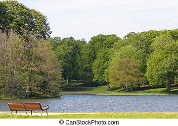 Bench, lake and tress - A solitary empty bench overlooking a...