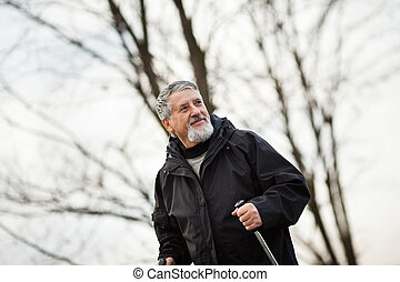 Senior man nordic walking, enjoying the outdoors, the fresh...