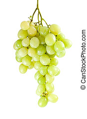 Green grapes bunch muscat breed isolated on the white...