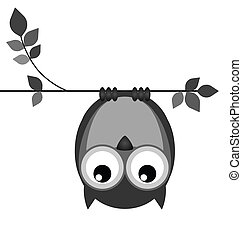 Upside down owl on a branch isolated on white background