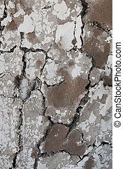 Cow Manure Wall - Texture of an exterior wall of a house...