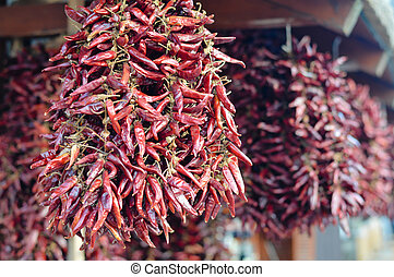 Hot spicy traditional chilli pepper paprika hanging in bunch...