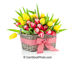 spring tulips in wooden basket, on white background happy...