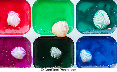 Colorful paints with sea shells