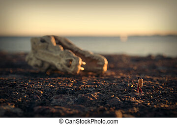 Hiker and the great skull - Woman hiking in sunset, great...