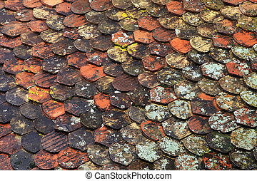 Old brown tile roof background - Old red and brown moss tile...