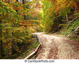 colors of fall - Old road to Poiana Brasov - Romania