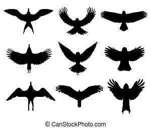 Birds in flight - Black silhouettes of birds in flight,...