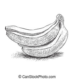 sketch banana - sketch group banana