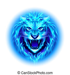 Head of fire lion - Head of aggressive blue fire lion...