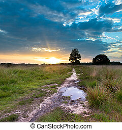Heathland Trail Sunset - Spectacular Sunset over Trail in...