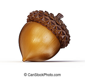 acorn - brown acorn isolated on a white background
