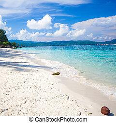 完美, 熱帶, 綠松石, 水, 沙子, 白色, 海灘