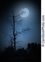 Dead tree in a full moon night. Added some digital noise