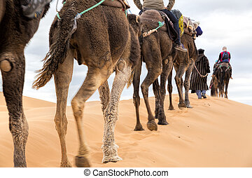Tourists on safari, Morocco