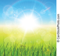 Sunny natural background with vector sun and grass