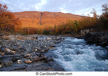 Autumn river, - A beautiful view at the Abisko river in...