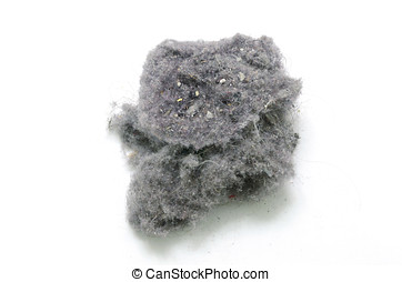 Dust bunny over a white background. House cleaning concept