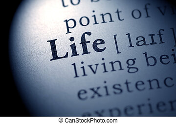life - Fake Dictionary, definition of the word life.