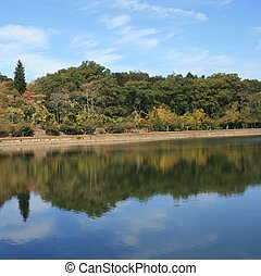 Brookline Reservoir - Trees and sky reflected in a...