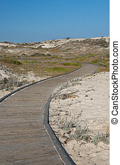 Vertical of empty boardwalk curves through a sandy beach