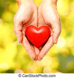 Red heart in human hands on green leaves background
