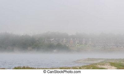 Fog rolls by the coastline of Bodega Bay