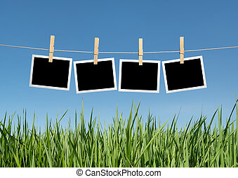 instant photos with grass - blank instant photos hanging on...