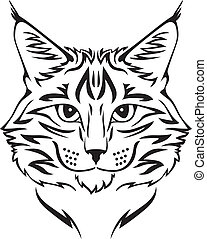 Maine Coon cat - Contour image of muzzle flurry Maine Coon...
