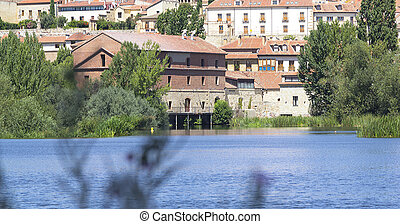 Houses on the bank of a river