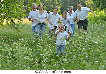 Big family in a park - Big family is having fun in a summer...