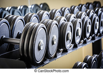 Row of barbells or dumbbells in the gym