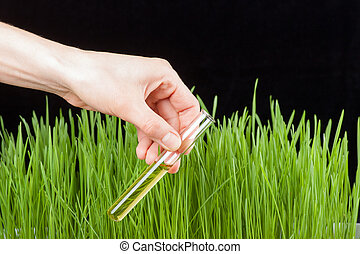 Hand with a test tube and grass Fertilizer