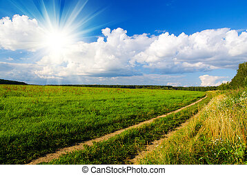 idilic rural landscape with green grass field, blue skywith...