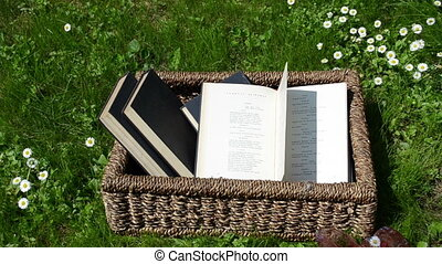 books basket thumb page - Books in wicker basket between...