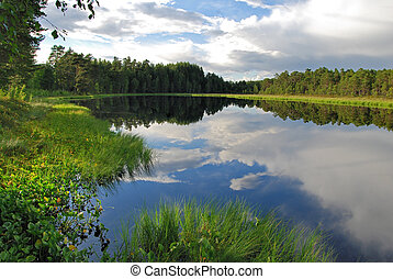 Calm lake reflection - A beautiful view of a perfectly calm...