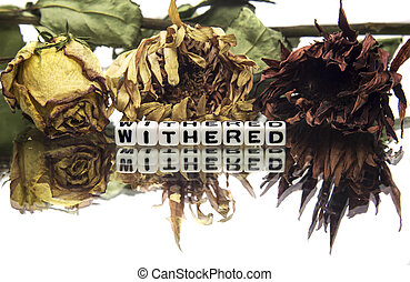 Withered text message with wilted flowers