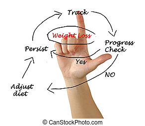 Diagram of weight loss